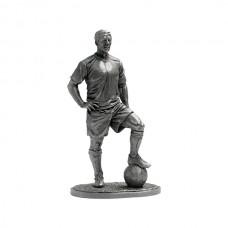 Футболист - капитан команды